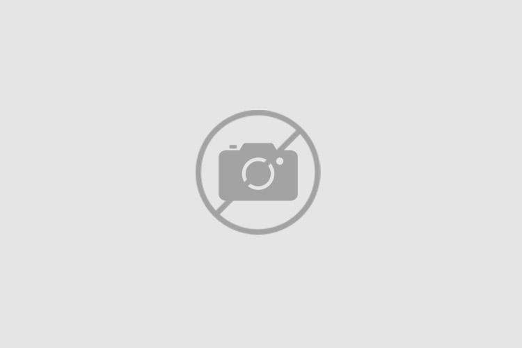 11927 FEBI BILSTEIN